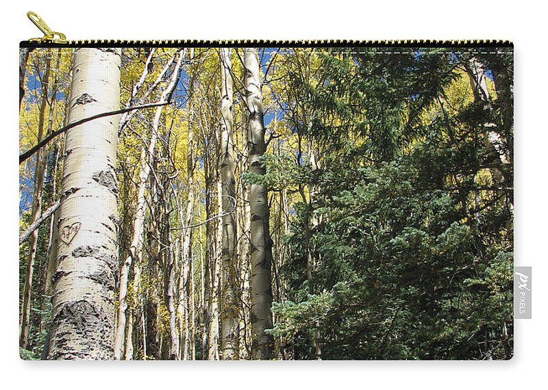 Landscape Carry-all Pouch featuring the photograph New Mexico Series - Standing Tall On The Mountain by Kathleen Grace