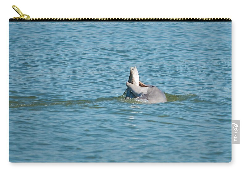 Dolphin Carry-all Pouch featuring the photograph No Snook Limit For This Guy by Christine Stonebridge