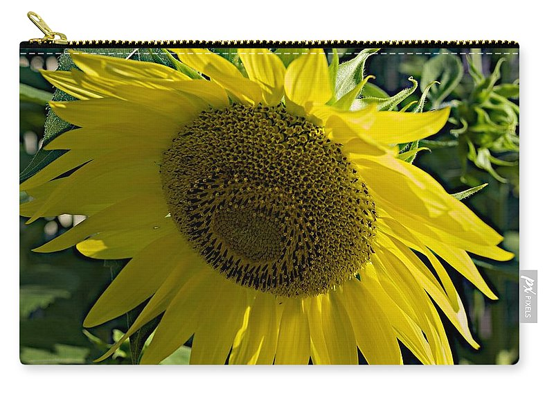 Horticultural Demonstration Gardens Carry-all Pouch featuring the photograph Normal Sun by Joseph Yarbrough