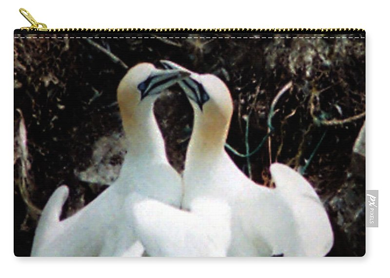 Birds Carry-all Pouch featuring the photograph Northern Gannets by Donna Brown