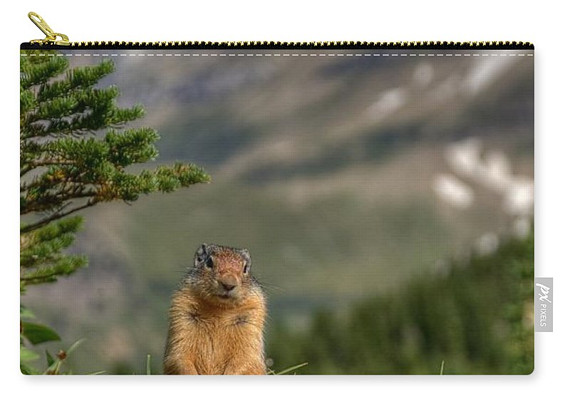Logans Pass Carry-all Pouch featuring the photograph Not Much...whatz Up With You? by James Anderson