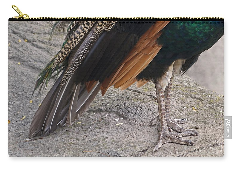 Peahen Carry-all Pouch featuring the photograph Her Kind Of Beauty by Ann Horn