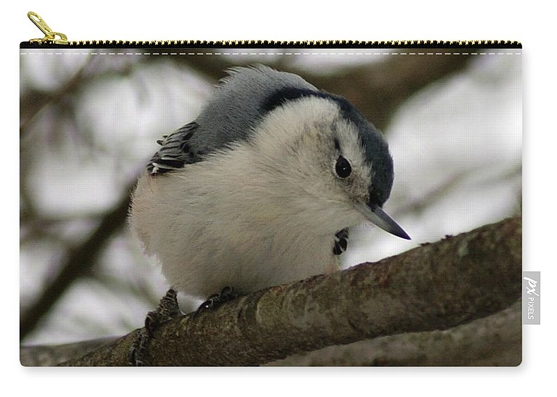 Nuthatch Carry-all Pouch featuring the photograph Nuthatch I by Joe Faherty
