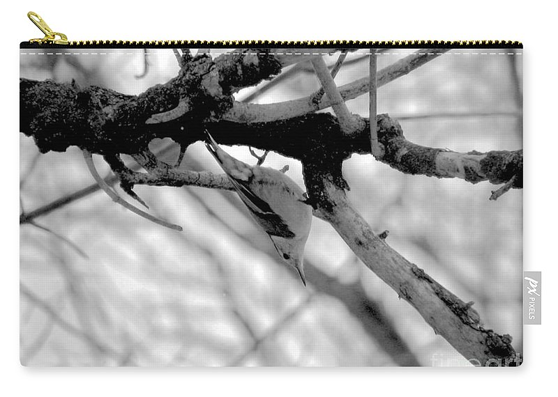 White Carry-all Pouch featuring the photograph Nuthatch by Art Dingo