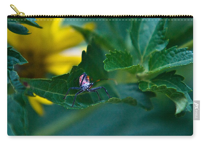 Nymphal Carry-all Pouch featuring the photograph Nymphal Himipterian 1 by Douglas Barnett