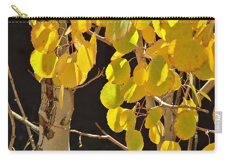 Aspen Carry-all Pouch featuring the photograph Oh Those Golden Leaves by Margaret Bobb