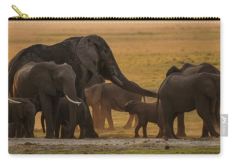 Africa Carry-all Pouch featuring the photograph On The Plain by Alistair Lyne