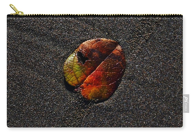 Sand Carry-all Pouch featuring the photograph On Vacation by Teri Schuster