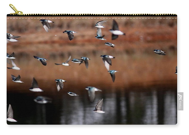 Tree Swallows Carry-all Pouch featuring the photograph One Last Swallow by Travis Truelove