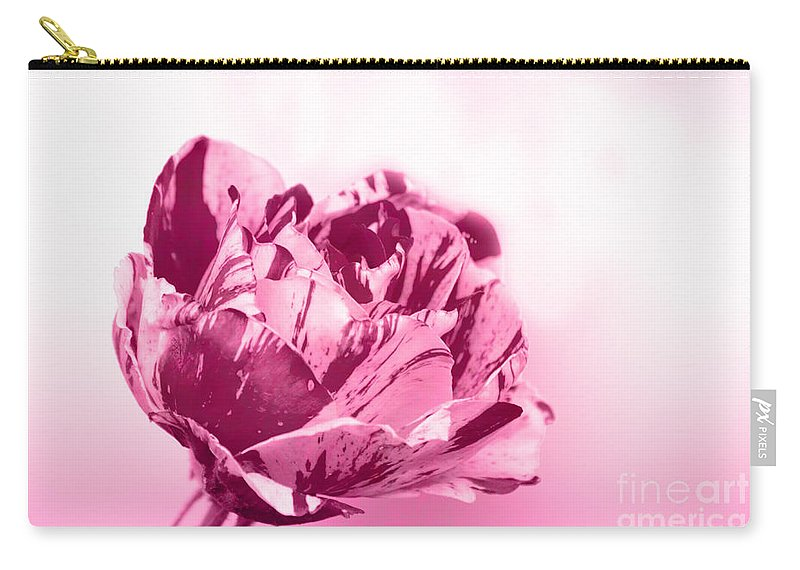 Rose Carry-all Pouch featuring the photograph Only A Rose by Jim And Emily Bush
