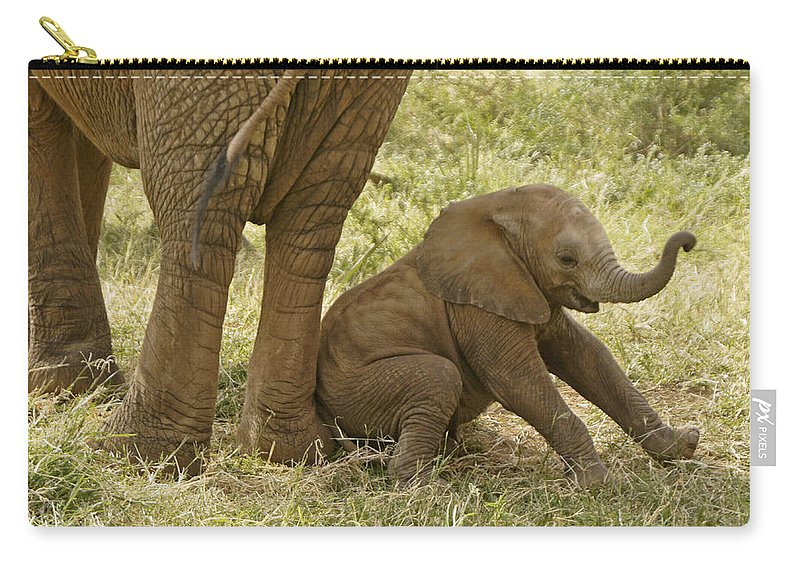 Africa Carry-all Pouch featuring the photograph Oops by Michele Burgess
