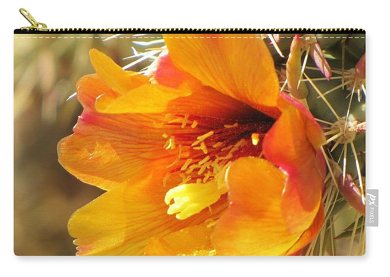 Cactus Flower Carry-all Pouch featuring the photograph Orange And Yellow Cactus Flower by Michelle Cassella
