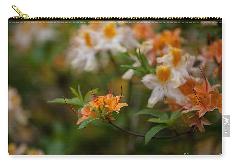 Rhodies Carry-all Pouch featuring the photograph Orange Brilliance by Mike Reid