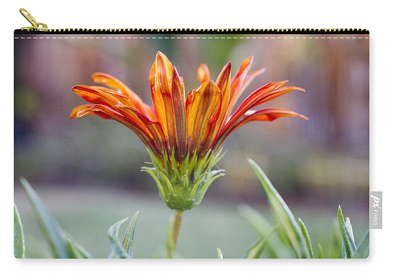 Orange Carry-all Pouch featuring the photograph Orange Gerber 3 by Jessica Velasco