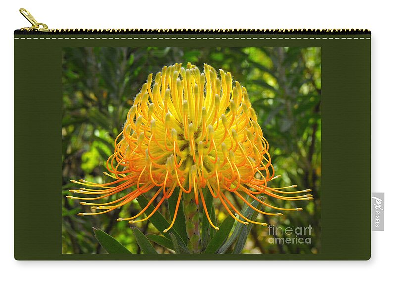 Flower Carry-all Pouch featuring the photograph Orange Protea Flower Art by Rebecca Margraf