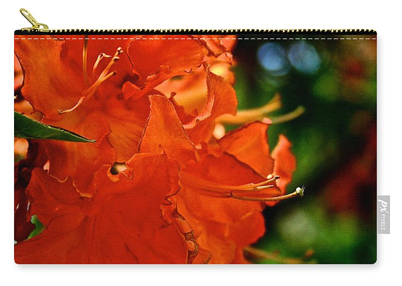 Plant Carry-all Pouch featuring the photograph Orange by Susan Herber