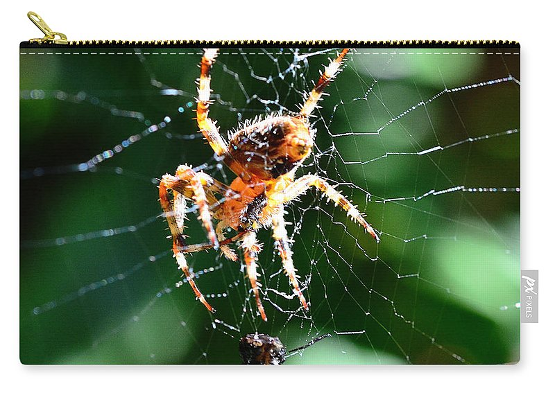 Spider Carry-all Pouch featuring the photograph Orb Weaver And Lunch by Chriss Pagani