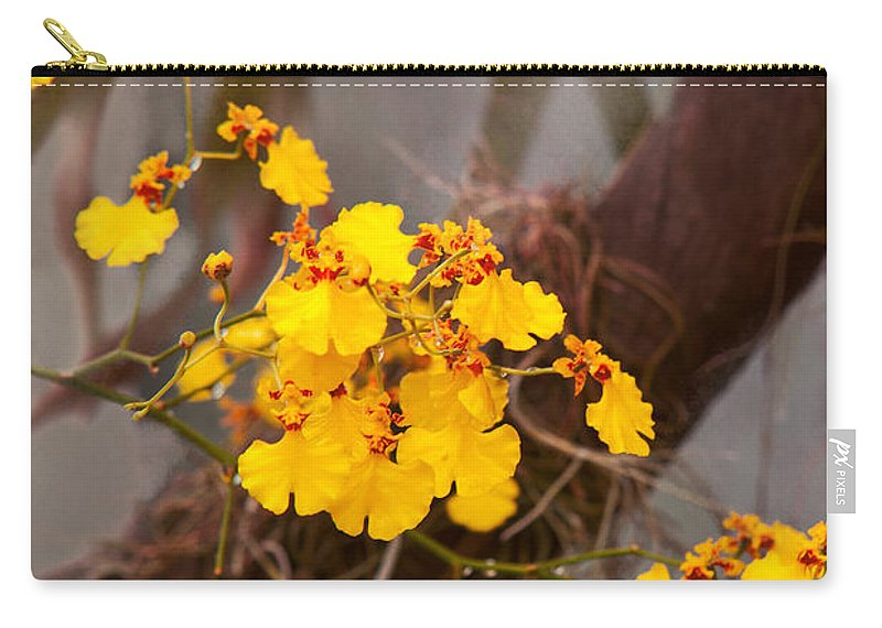 Orchid Carry-all Pouch featuring the photograph Orchid - Golden Morning by Mike Savad