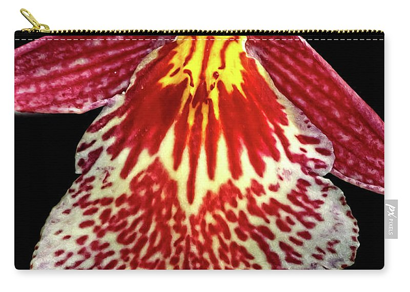 Orchid Carry-all Pouch featuring the photograph Orchid Hybrid by Dave Mills