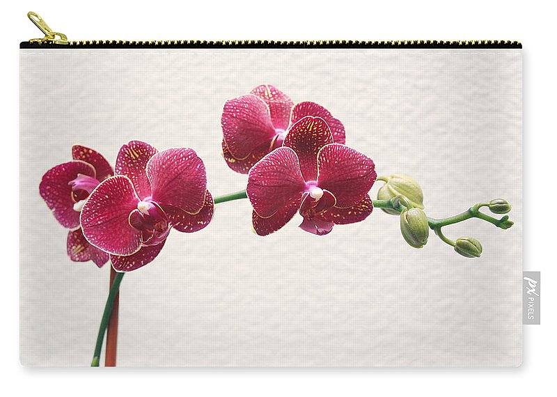 Flower Carry-all Pouch featuring the photograph Orchid by Masha Batkova
