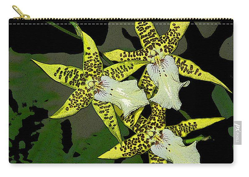 Orchids Carry-all Pouch featuring the photograph Orchid Trilogy by Cindy Manero