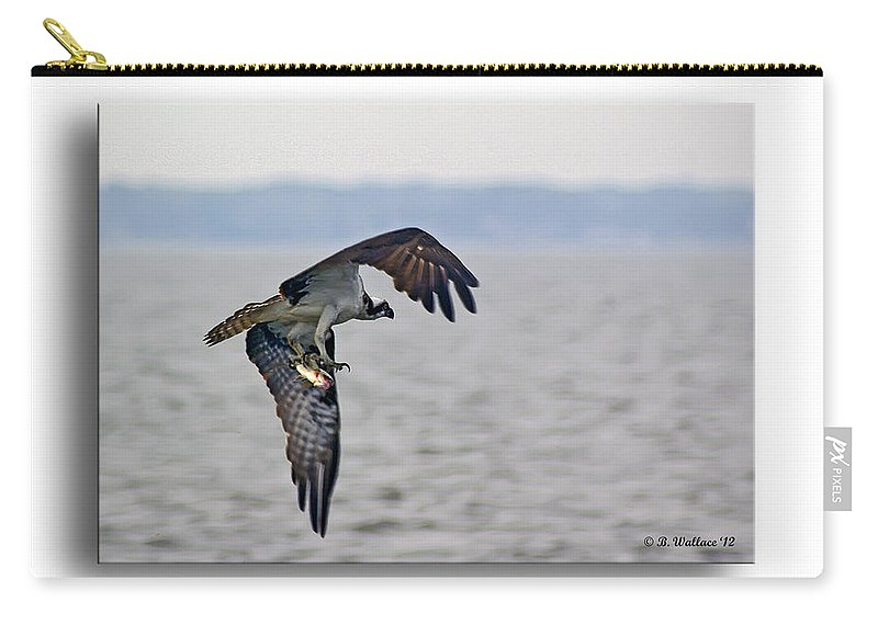 2d Carry-all Pouch featuring the photograph Osprey Grab by Brian Wallace
