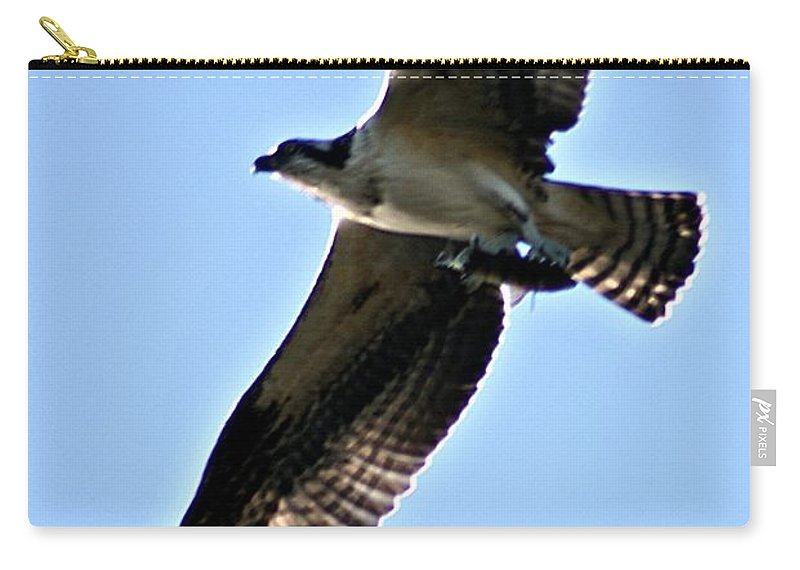 Osprey Carry-all Pouch featuring the photograph Osprey I by Joe Faherty