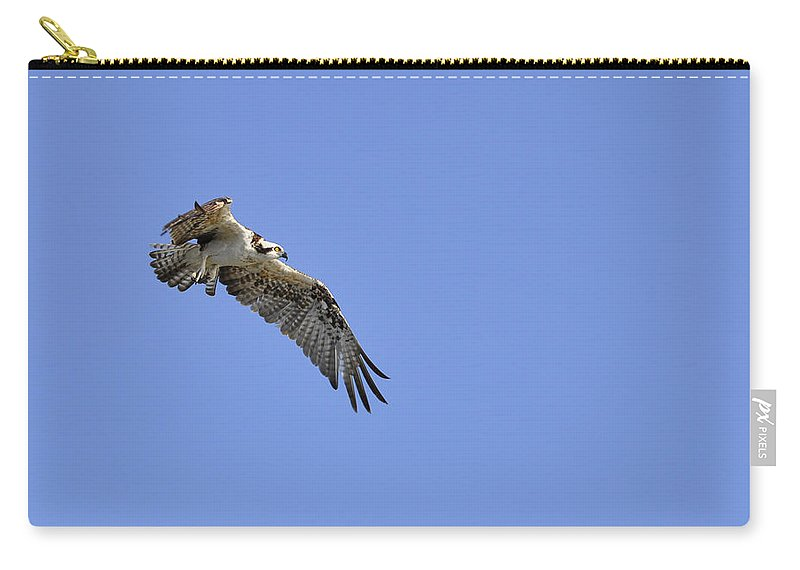 Osprey Carry-all Pouch featuring the photograph Osprey in Flight by Christine Stonebridge