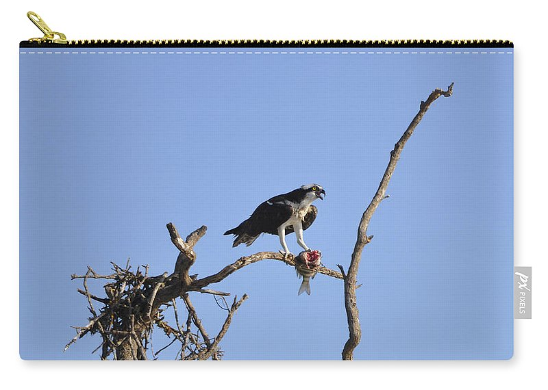 Osprey Carry-all Pouch featuring the photograph Osprey with Catch I by Christine Stonebridge