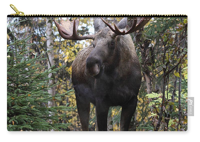 Doug Lloyd Carry-all Pouch featuring the photograph Out In The Open by Doug Lloyd