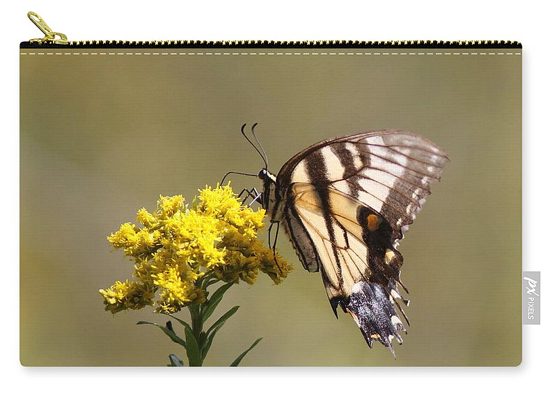 Swallowtail Butterfly Carry-all Pouch featuring the photograph Outstanding by Travis Truelove
