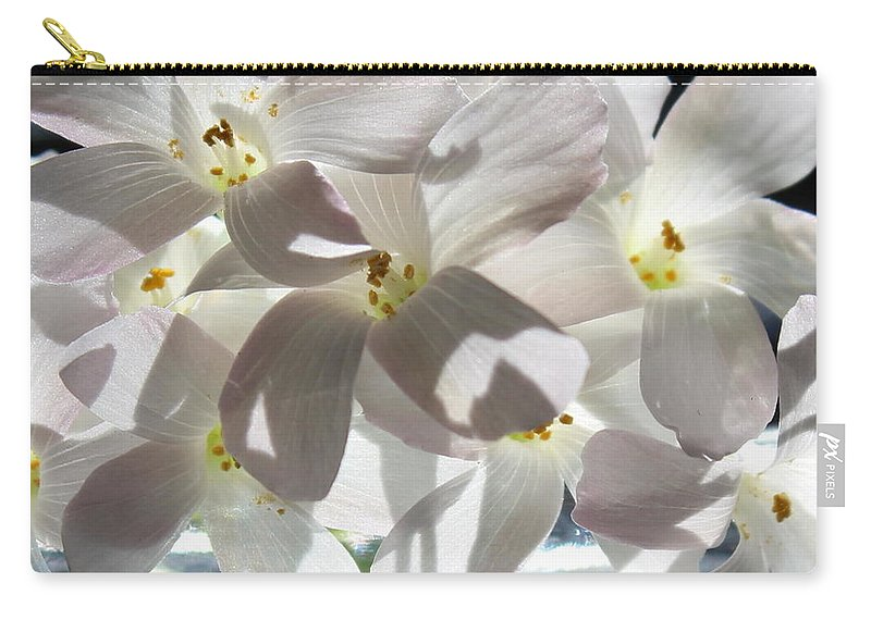 Floral Carry-all Pouch featuring the photograph Oxalis Flowers by Kume Bryant