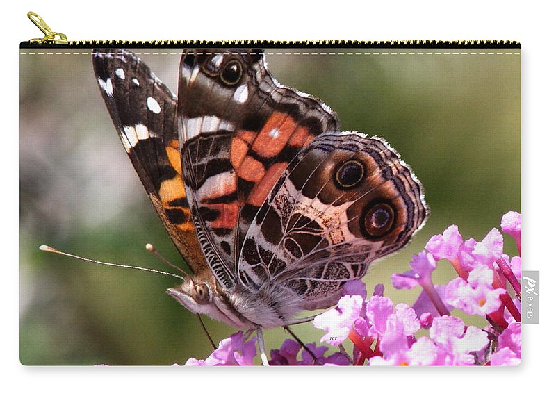 Butterfly Carry-all Pouch featuring the photograph Painted Lady by Travis Truelove