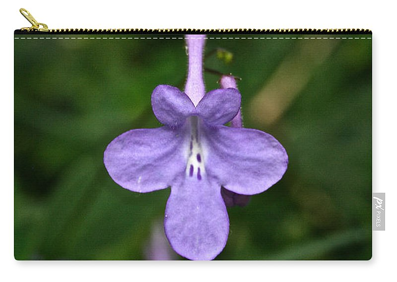 Tropical Plant Carry-all Pouch featuring the photograph Pale Purple by Susan Herber