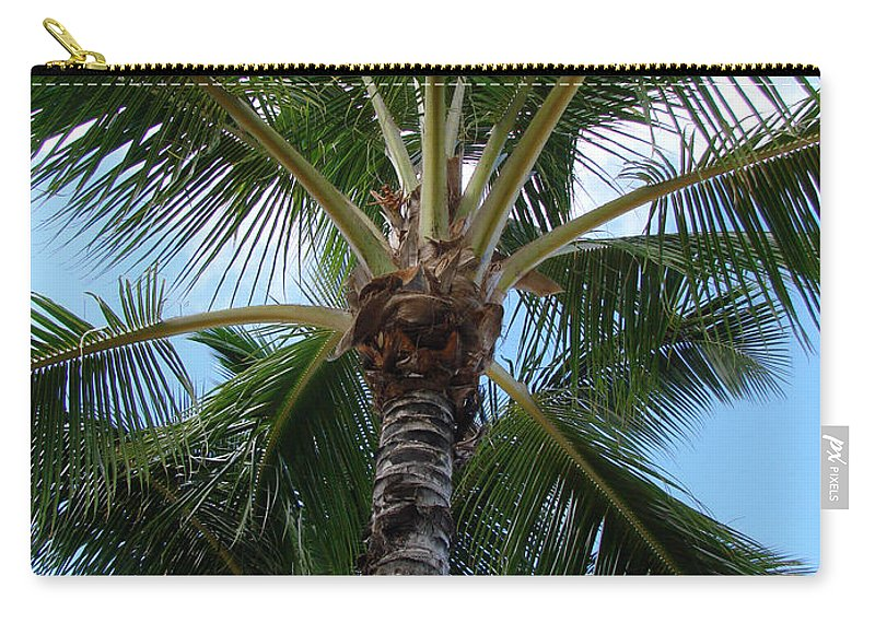 Tropical Palm Trees Carry-all Pouch featuring the photograph Palm Tree Umbrella by Athena Mckinzie