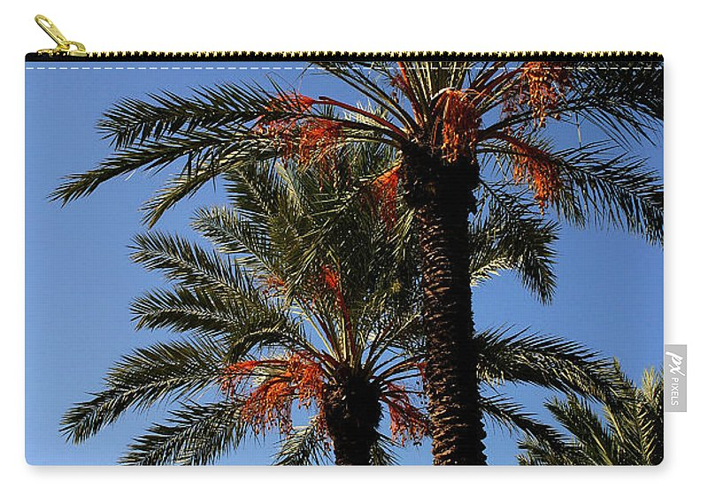 Gary Gingrich Carry-all Pouch featuring the photograph Palms9895b by Gary Gingrich Galleries