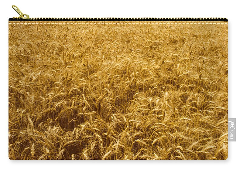 Wheat Carry-all Pouch featuring the photograph Palouse Wheat by Photo Researchers