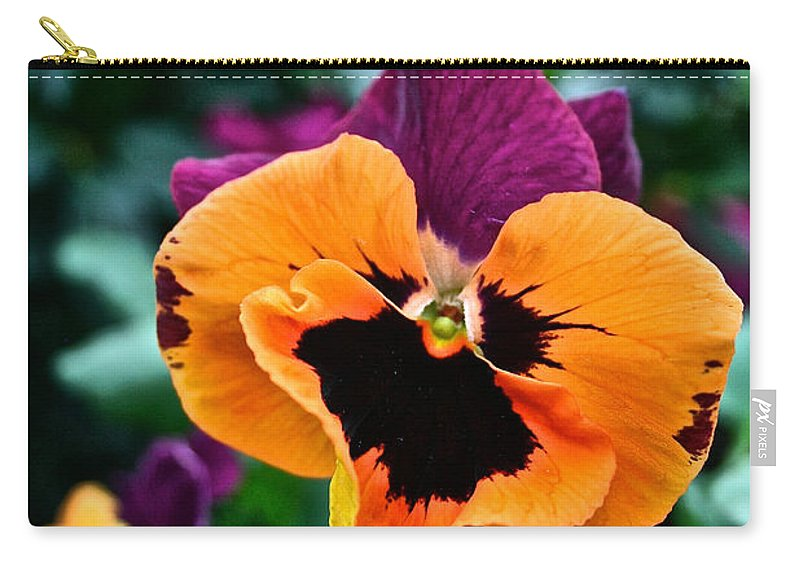 Tropical Plant Carry-all Pouch featuring the photograph Pansy Power by Susan Herber