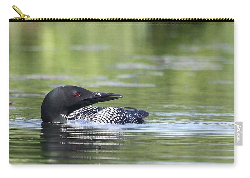 Common Loon Carry-all Pouch featuring the photograph Parental Vigilance by Teresa McGill