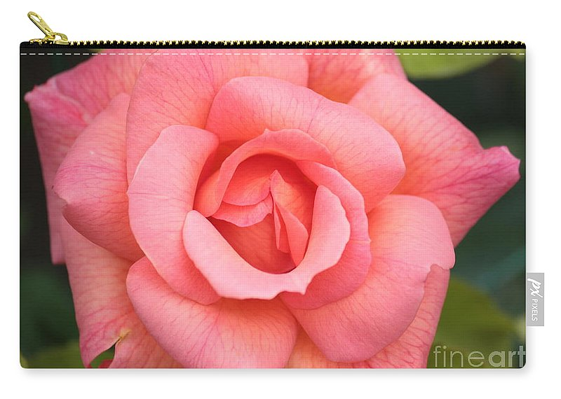 Rose Carry-all Pouch featuring the photograph Paris Rose by Carol Groenen