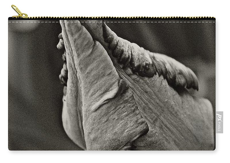 Carry-all Pouch featuring the photograph Parrot Tulip In Black And White by Chris Berry