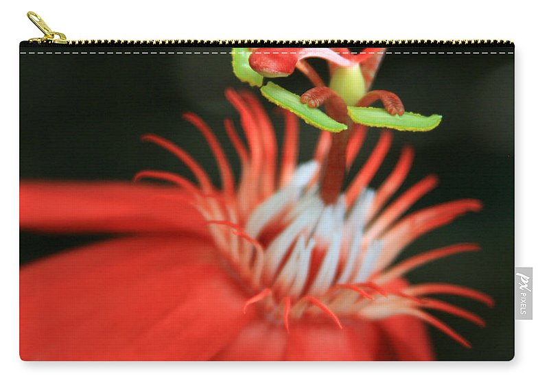 Aloha Carry-all Pouch featuring the photograph Passiflora Vitifolia - Scarlet Red Passion Flower by Sharon Mau