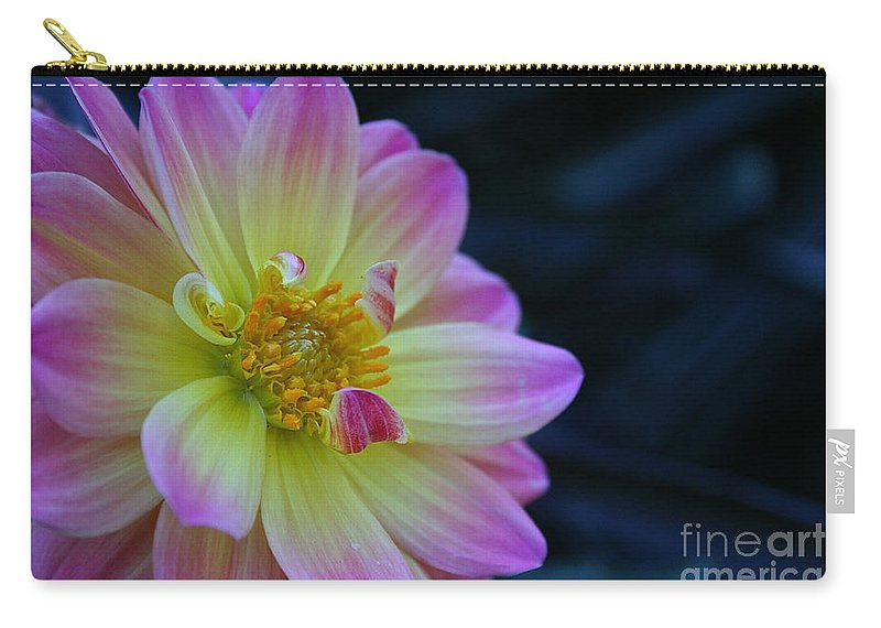 Landscape Carry-all Pouch featuring the photograph Pastel Dahlia by Susan Herber