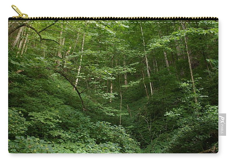 Forest Carry-all Pouch featuring the photograph Peaceful Forest by Megan Cohen