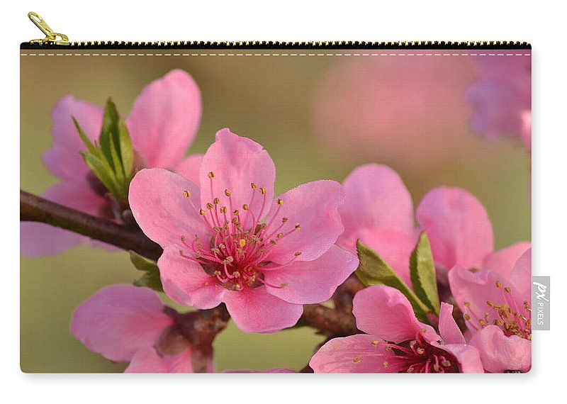 J.d. Grimes Carry-all Pouch featuring the photograph Peach Beautiful by JD Grimes