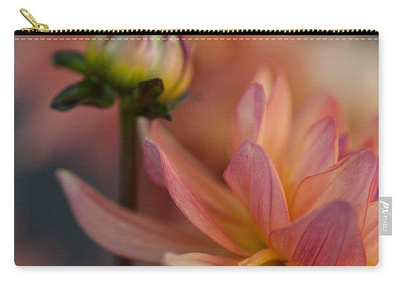 Dahlia Carry-all Pouch featuring the photograph Peach Dahlias by Mike Reid