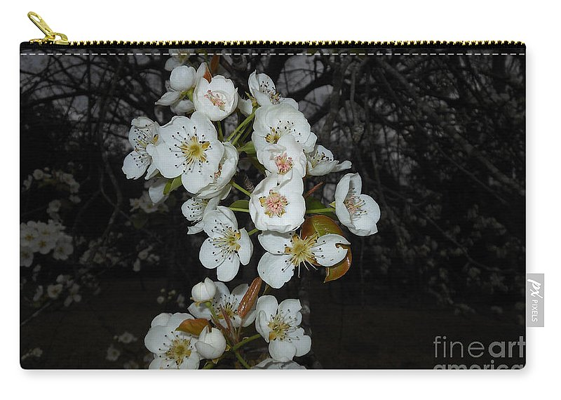 Flower Carry-all Pouch featuring the photograph Pear Blooms And Tree by Donna Brown