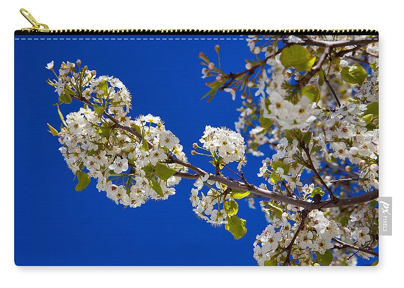 Fine Carry-all Pouch featuring the photograph Pear Spring by Chad Dutson