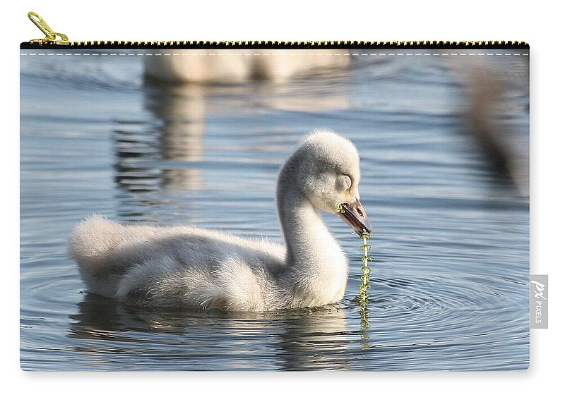 Cygnet Carry-all Pouch featuring the photograph Pearls Of Innocence by Teresa McGill