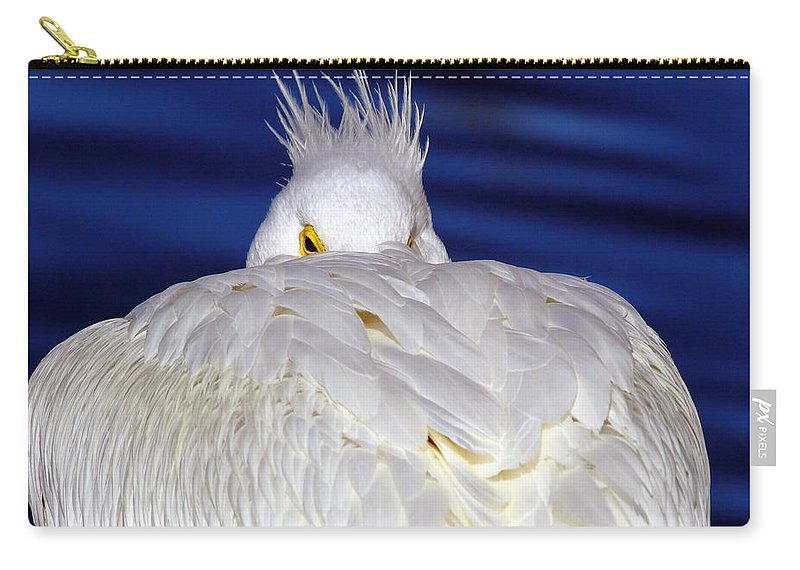 American White Pelican Carry-all Pouch featuring the photograph Peekaboo by Andrew McInnes